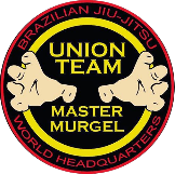 Union Team BJJ is a Martial Arts Schools Or Businesses