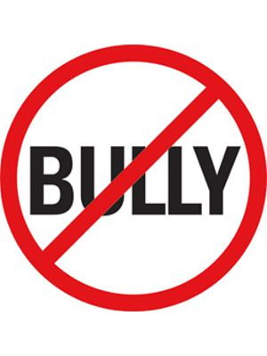 Member Solutions Provides Anti-Bullying Curriculum Ideas